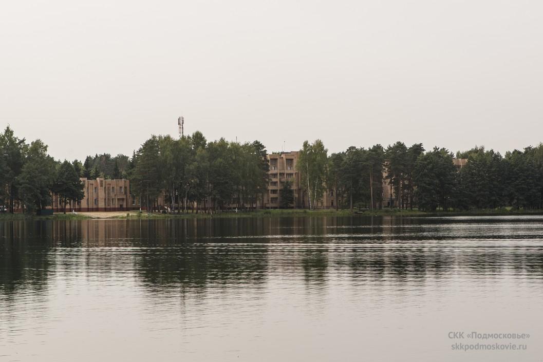 разыгрывался среди боровое озеро ногинский район фото содержании